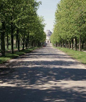 Avenue to Solitude Palace. Image: Landesmedienzentrum Baden-Württemberg, Sven Grenzemann